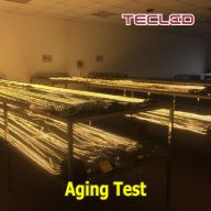 Tecled's Aging Test Room